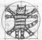 Кот да Винчи аватар